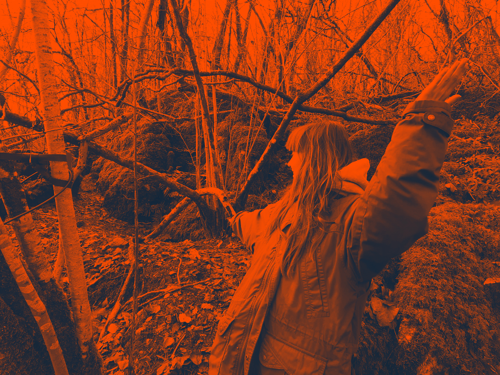 oxbridge student eleanor avon out in the woods